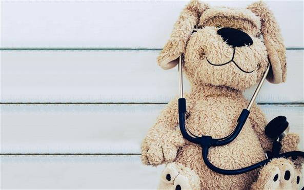 A stuffed dog teddy bear wearing a stethoscope