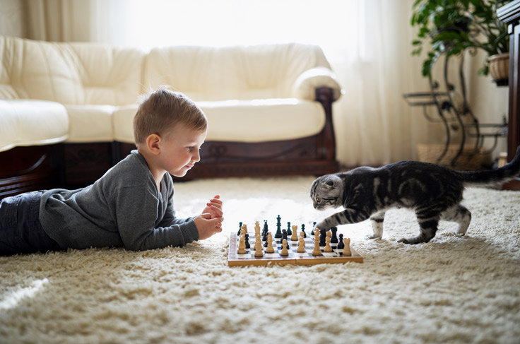 Young kids playing chess with a cat