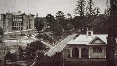 Panoramic view of the Royal Womens Hospital
